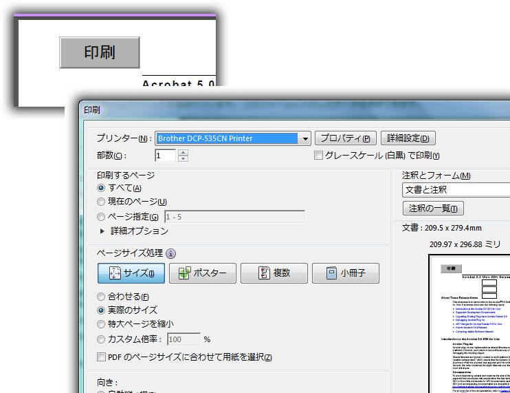 AFormAut : SetJavaScriptAction メソッド